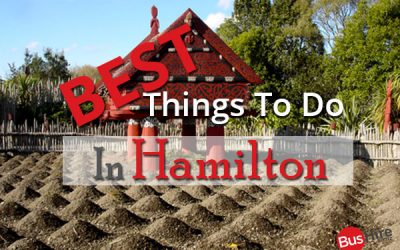 Best Things To Do In Hamilton