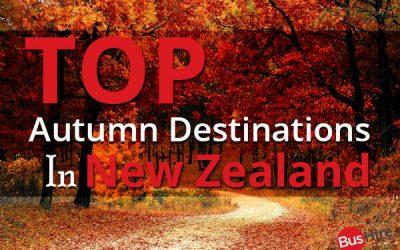 Top Autumn Destinations in New Zealand