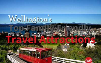 Wellington's Top Family-Friendly Travel Attractions