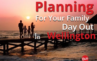 Planning For Your Family Day Out In Wellington