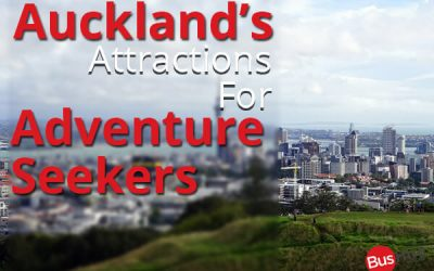 Auckland's Attractions For Adventure Seekers