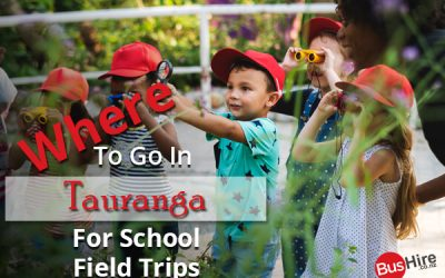 Where To Go In Tauranga For School Field Trips
