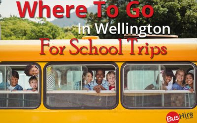 Where To Go In Wellington For School Trips